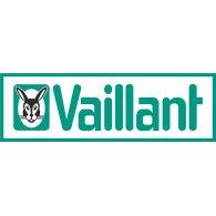 Scaldabagni Vaillant